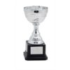 Pokal San Manuel 2